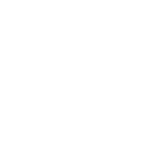 VOSH Travels logo white